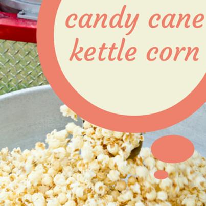 Zane Holmquist: Candy Cane Kettle Corn Recipe & Pumpkin Pie Milkshake