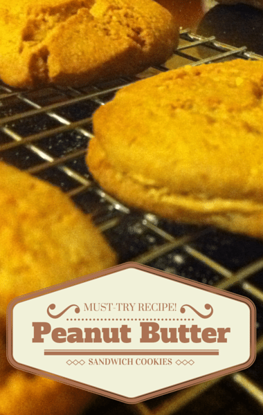 America S Test Kitchen Peanut Butter Sandwich Cookies