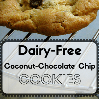 Rachael Ray: Dairy-Free Coconut-Chocolate Chip Cookies Recipe